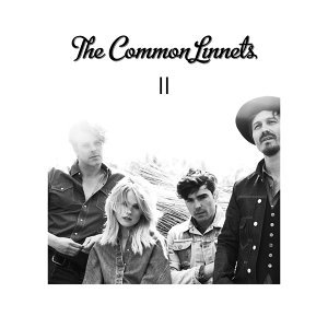 The Common Linnets 歌手頭像