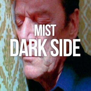 Mist 歌手頭像