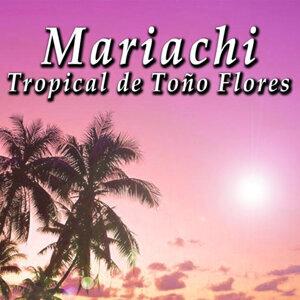 Mariachi Tropical De To#o Flores 歌手頭像