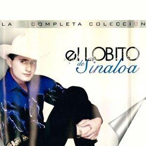 El Lobito De Sinaloa
