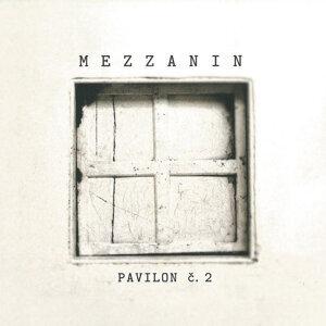 Mezzanin 歌手頭像