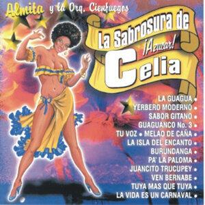 Almita Y La Orquesta Cienfuegos 歌手頭像
