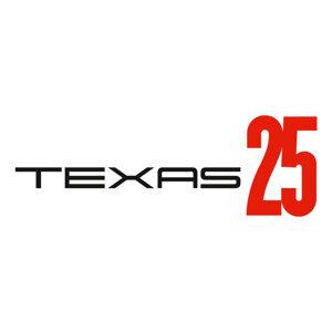 Texas (德州合唱團) 歌手頭像