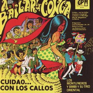 Los Montuneros y Bimbi y Su Trio Oriental 歌手頭像