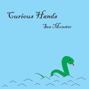 Curious Hands 歌手頭像