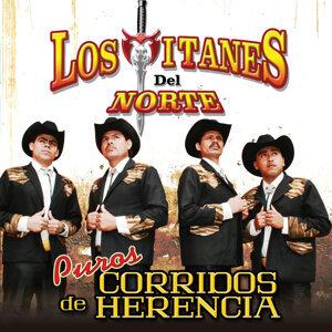 Los Titanes Del Norte 歌手頭像