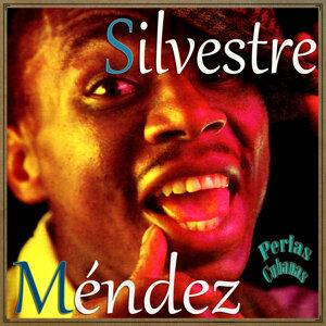Silvestre Mendez 歌手頭像