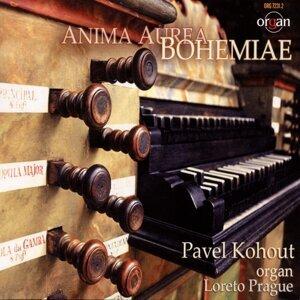 Pavel Kohout 歌手頭像