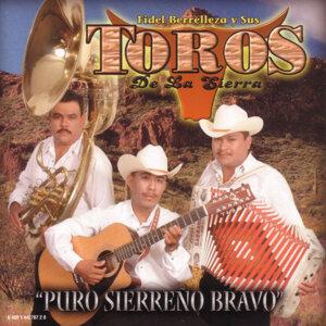 Fidel Berrelleza Y Sus Toros De La Sierra 歌手頭像