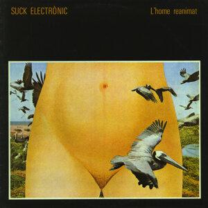 Suck Electrònic 歌手頭像
