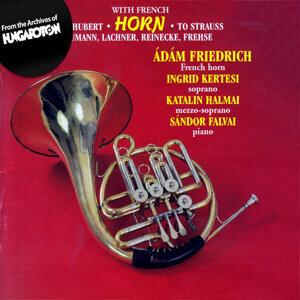 Friedrich Ádám 歌手頭像