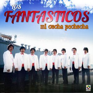 Los Fantasticos 歌手頭像