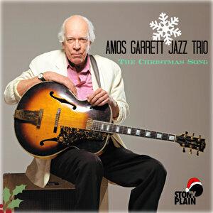 Amos Garrett Jazz Trio