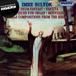 Sulyok Imre 歌手頭像