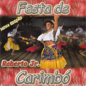 Roberto Jr