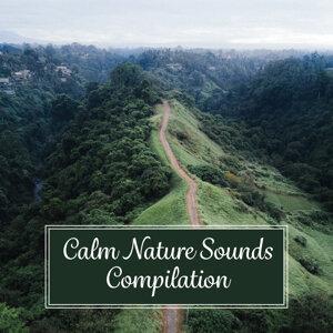Life Sounds Nature 歌手頭像