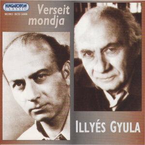 Illyés Gyula 歌手頭像