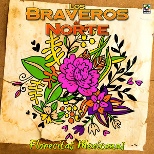 Los Braveros Del Norte 歌手頭像