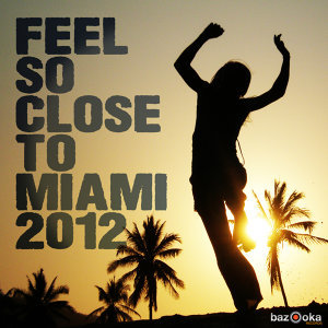 Feel So Close to Miami 2012 歌手頭像