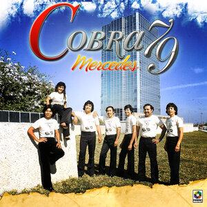 Cobra 79 歌手頭像