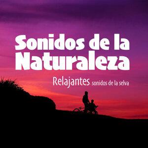 Sonidos de la Naturaleza 歌手頭像