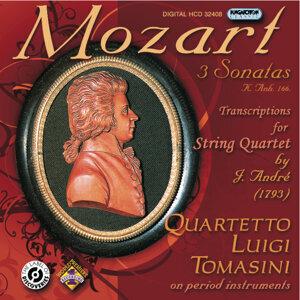 Quartetto Luigi Tomasini 歌手頭像