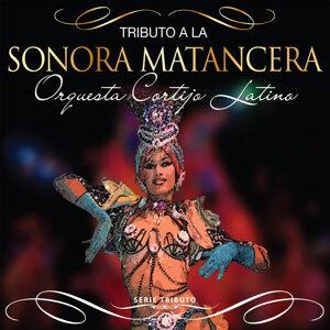 Orquesta Cortijo Latino 歌手頭像