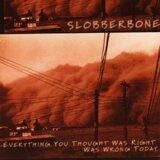 Slobberbone 歌手頭像