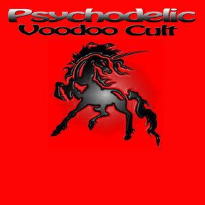 Psychodelic Voodoo Cult 歌手頭像