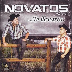 Novatos 歌手頭像