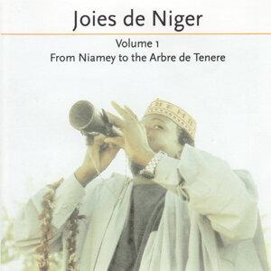 Joies De Niger 歌手頭像