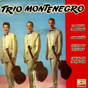 Trío Montenegro 歌手頭像