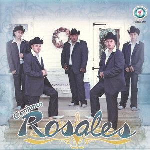 Conjunto Rosales 歌手頭像