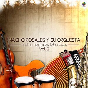 Ignacio Rosales 歌手頭像