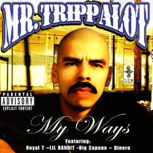 Mr. Trippalot 歌手頭像