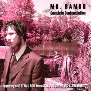Mr. Bambu 歌手頭像