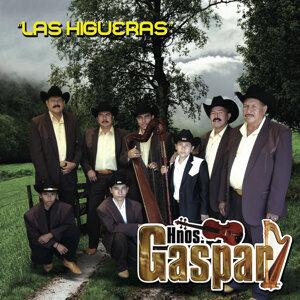Los Hnos. Gaspar 歌手頭像