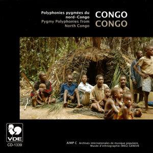 Pygmées 歌手頭像