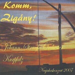 Wolfram Koloseus, Johann Strauss Orchester Kurpfalz 歌手頭像