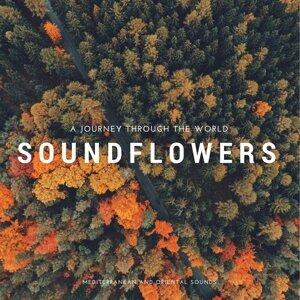 Soundflowers