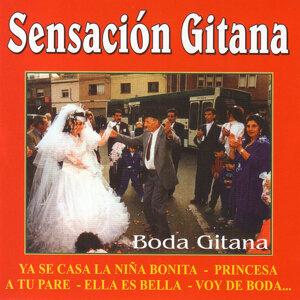 Sensación Gitana 歌手頭像