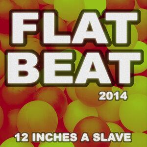 12 Inches A Slave 歌手頭像