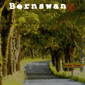 Bernswana 歌手頭像