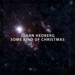 Johan Hedberg 歌手頭像
