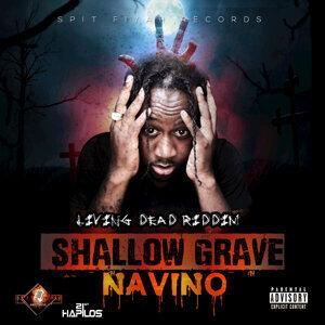 Navino 歌手頭像