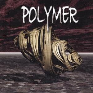 Polymer 歌手頭像
