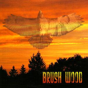 Brush Wood 歌手頭像