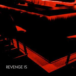 Revenge Is