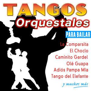 Andrea Vacheta | Orquesta Bonaerense 歌手頭像