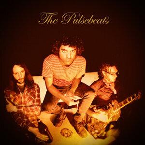 The Pulsebeats 歌手頭像